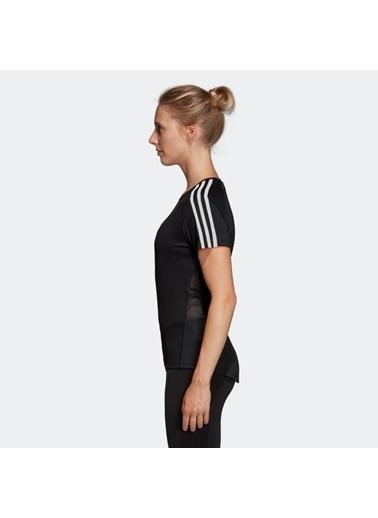 adidas Kadın  Tişört 100485281-0045 Zebra